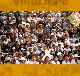 Villa Libre Nº 2: Organización y participación política