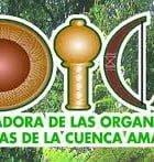 Declaración de Santa Cruz COICA (Coordinadora de organizaciones indígenas Cuenca del Amazonas) 14.06.2014