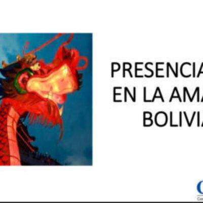Empresas chinas en la Amazonía boliviana