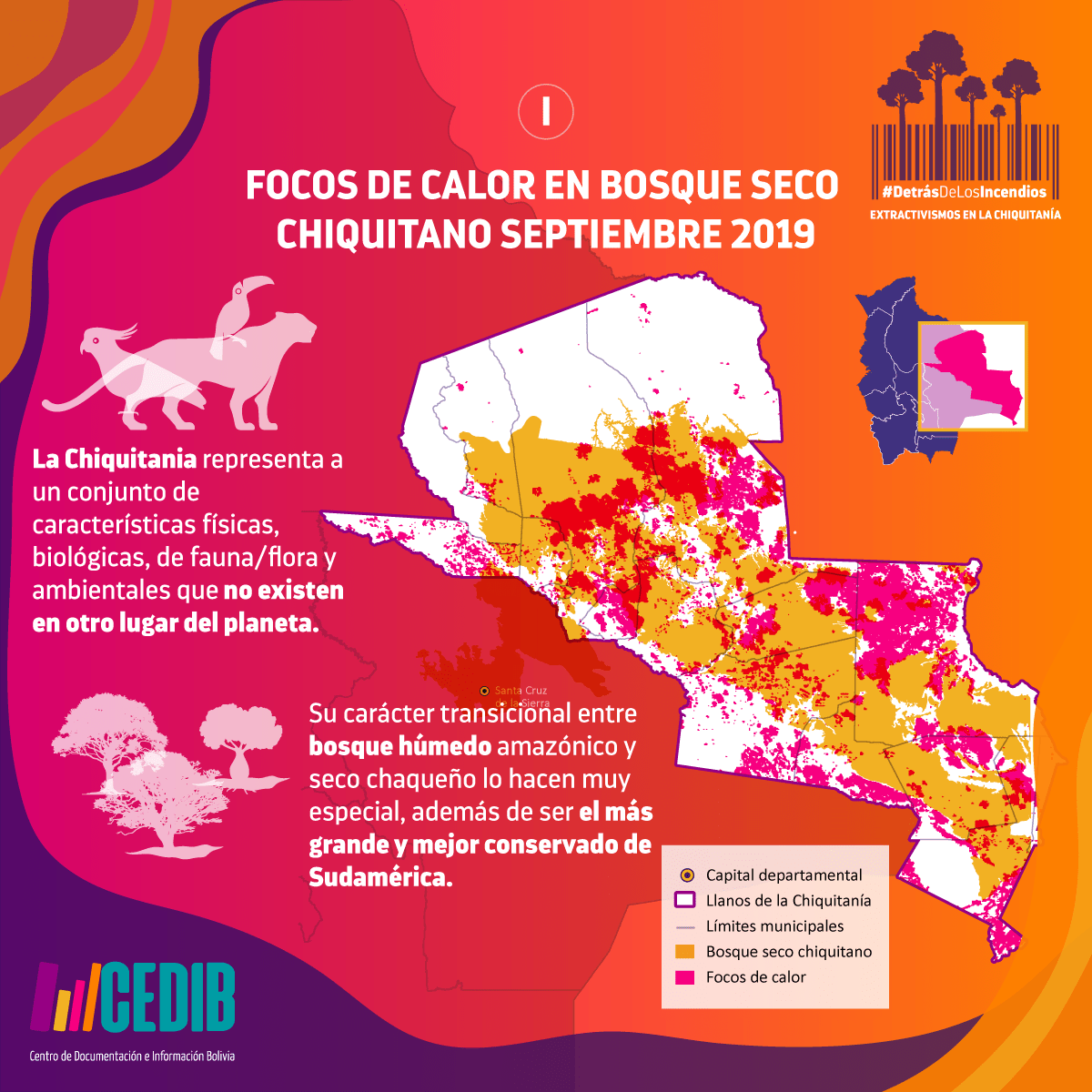 Focos de calor en el bosque seco Chiquitano 2019