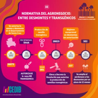 DetrásDeLosIncendios_infografia4-min(2)