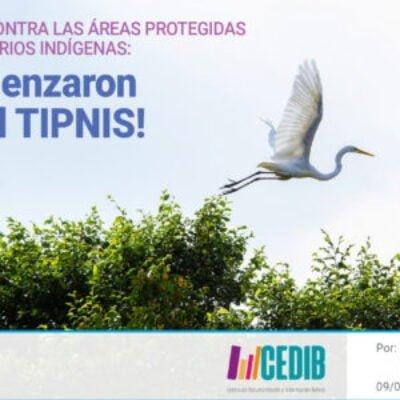 Nuevo ataque al Tipnis y las áreas protegidas de Bolivia