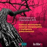 Dossier #1: Los incendios en la Chiquitania 2019. Políticas devastadoras, acciones irresponsables y negligencia gubernamental