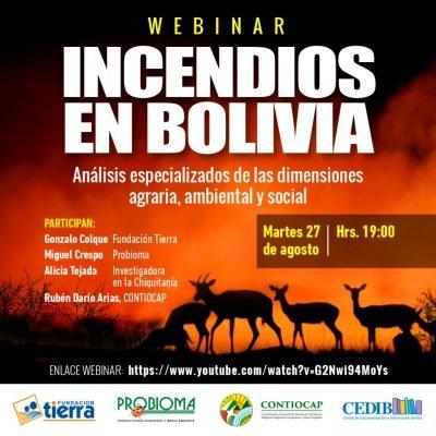 Incendios en Bolivia. Análisis especializados