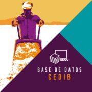 Contamos con dos bases de datos hemerográficas Recursos evaporíticos en Bolivia, periodo 2008 – 2016 Litio: exploración e industrialización en Bolivia, periodo 2014 -2019