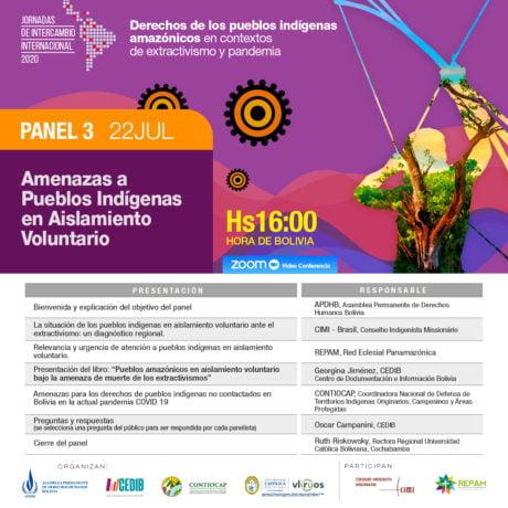 Derechos de los Pueblos Indígenas amazónicos en contextos de extractivismo y pandemia